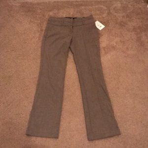 Maurices Pants - Maurices Boot Cut Pants